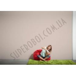 На фото Интерьер обоев Die glatte Wand 309150 AS Creation