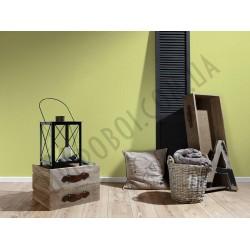 На фото Интерьер обоев Die glatte Wand 309556 AS Creation